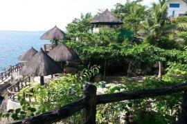 8 Bedroom Hotel / Resort for sale in Camoboan, Cebu
