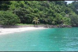 Land for sale in Laiya-Ibabao, Batangas