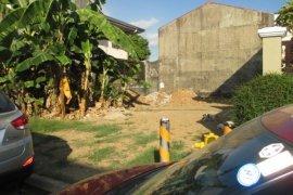 Land for sale in Santo Niño, Metro Manila
