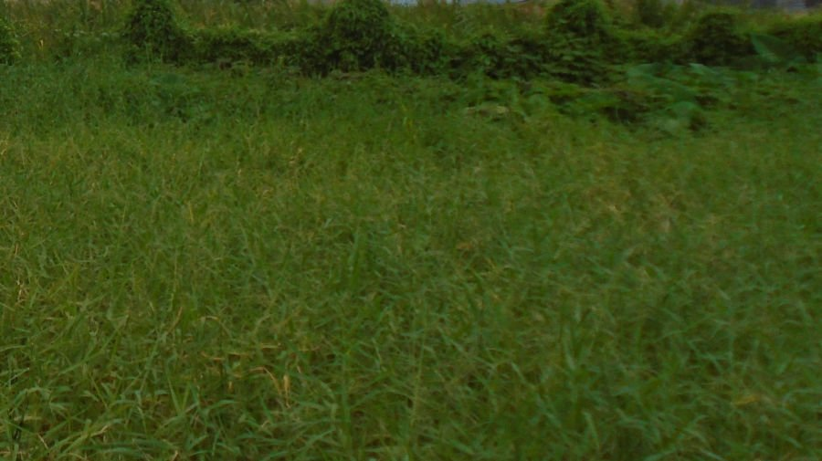 15 hectares expandable to 100 hectares lot in malolos city bulacan