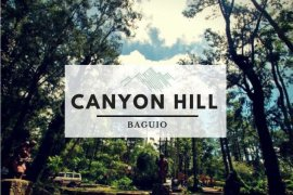 1 Bedroom Condo for sale in Pacdal, Benguet