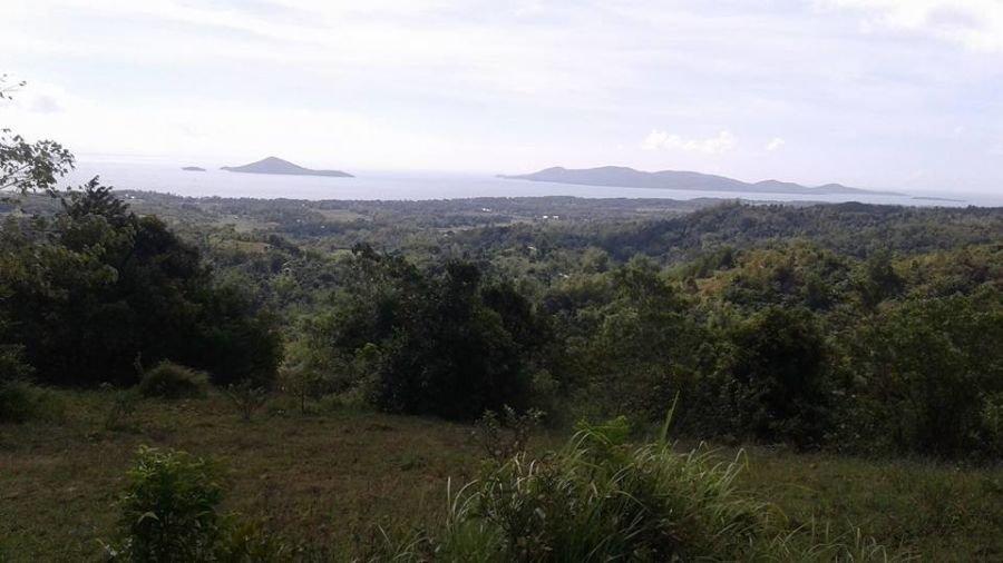 67000 sqm guimaras property over view facing ocean