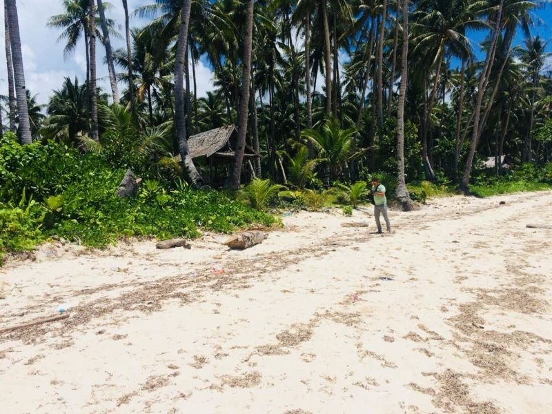 beach front lot for sale in baybay,burgos,siargao