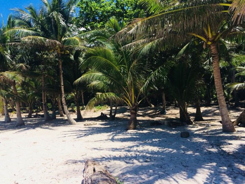beach front lot for sale in pilar,siargao islands