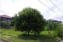Land for sale in Biñan, Laguna