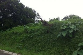 Land for sale in Maitim 2nd West, Cavite