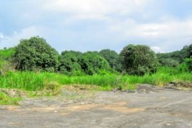 Land for sale in Pabanlag, Floridablanca