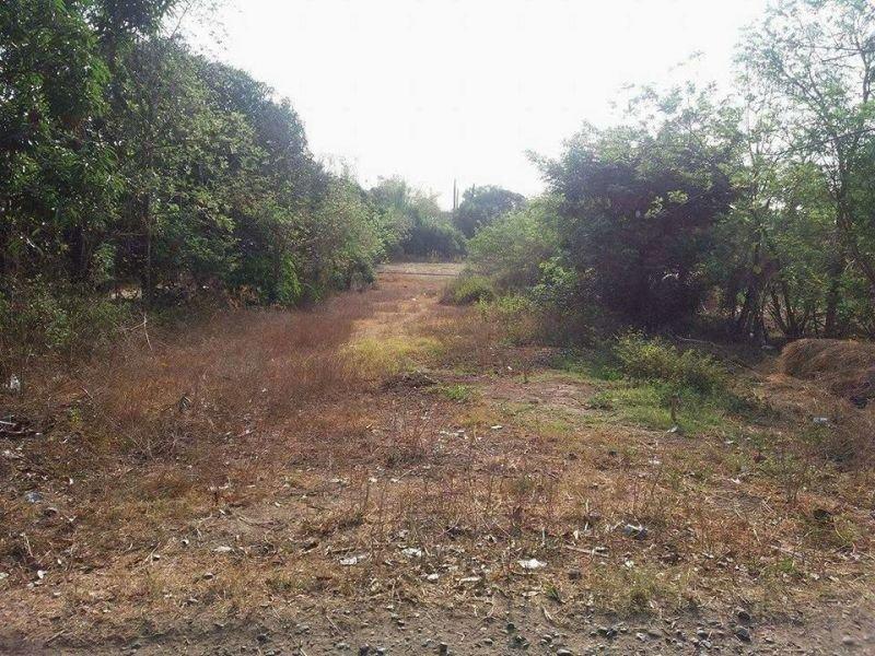 500k, raw land for sale, pangasinan