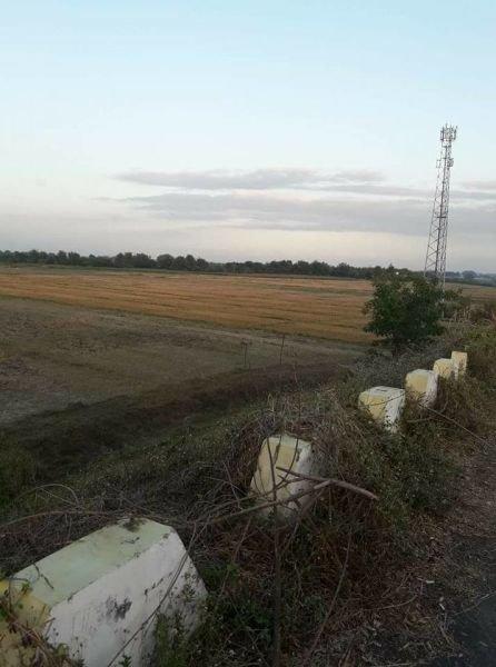300 hectares farm lot, tarlac, philippines