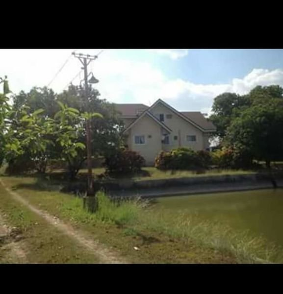 16 hectares farm, fishpond, and house for sale, tarlac city
