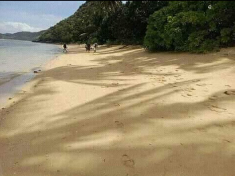 8 hectares beach lot for sale, with shoreline, palwan
