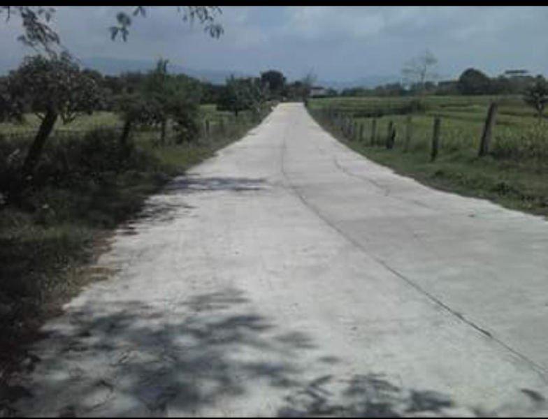 14 hectares lot for sale, pozorrubio pangasinan