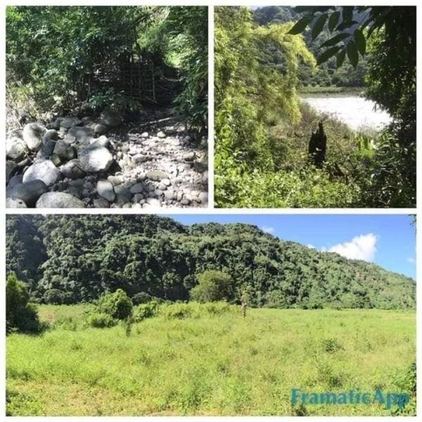 12.3 hectares, 60 php per sqm lot for sale, ilocos sur