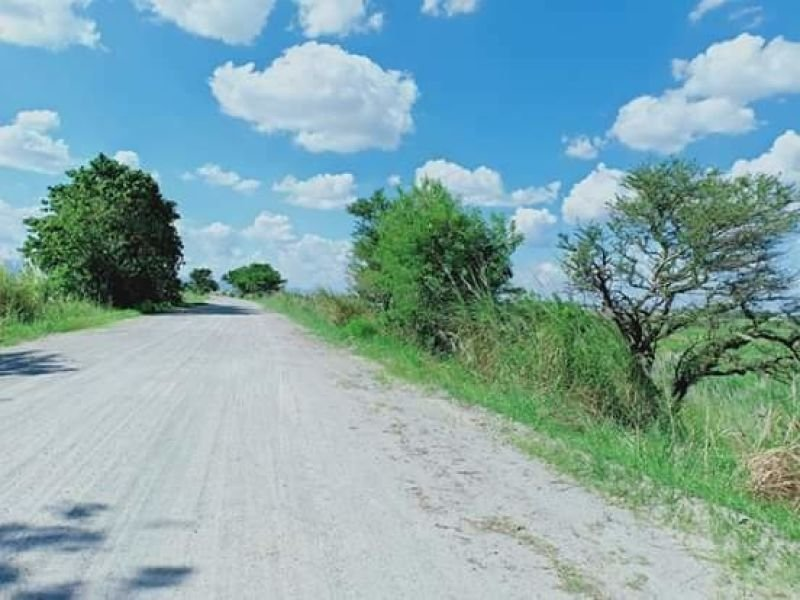 9.7 hectares lot for poultry, bacolor, pampanga