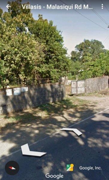 1.6 hectares mango farm, malasiqui pangasinan