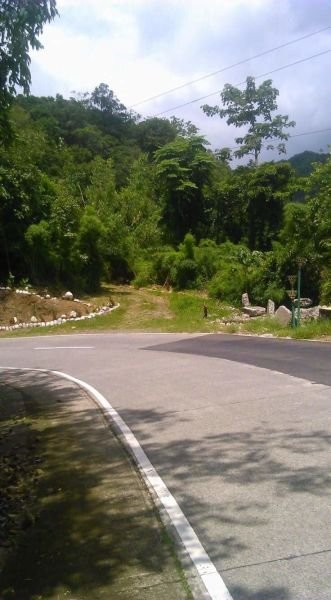 12.3 hectares lot for sale, tagudin, ilocos sur