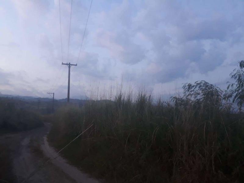 120 hectares lot floridablanca, 50 pesos per sqm
