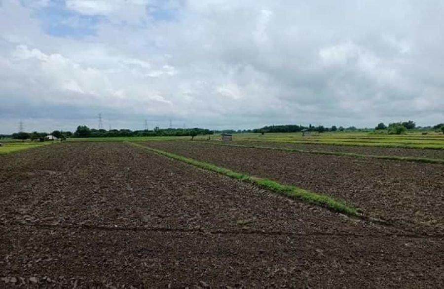 190 hectares farm lot for sale, lubao, pampanga