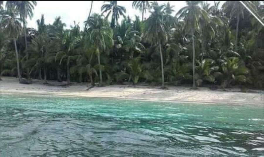 713 hectares beachlot for sale, camarines sur