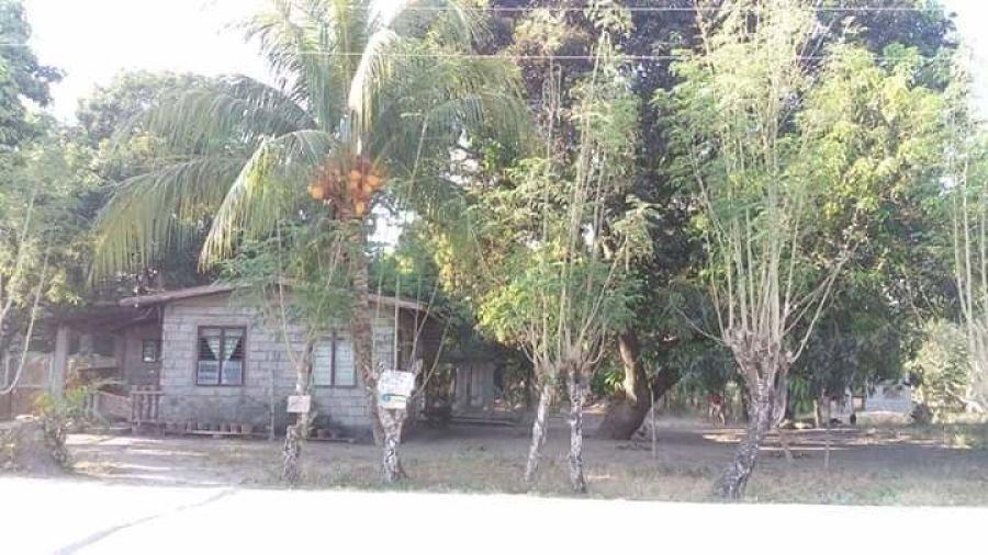 3,074 sqm house and lot, laoac, pangasinan