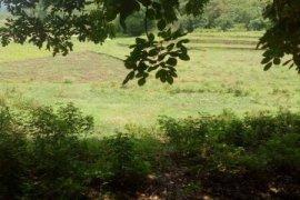 Land for sale in Gerona, Tarlac