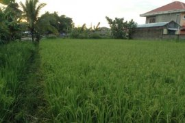 Land for sale in Camarines Sur