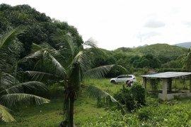 Land for sale in Poblacion, Carmen