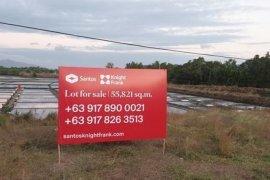 Land for sale in Nasugbu, Batangas