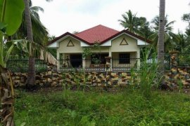 4 bedroom house for rent in Bacong, Negros Oriental