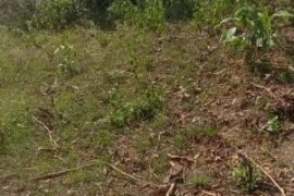 Land for sale in Paradise III, Bulacan