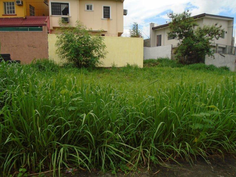 land for sale in metro manila