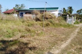 Land for sale in Sabangan, Pangasinan