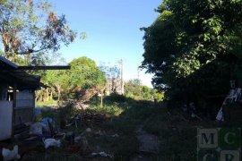 Land for sale in Pamplona Tres, Metro Manila