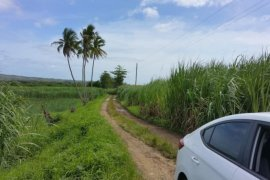 Land for sale in Malingin, Cebu
