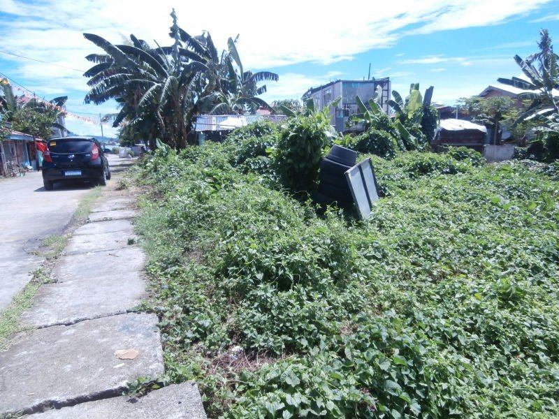 484sqm land for sale in tacloban city, leyte