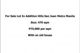 Land for sale in Maytunas, Metro Manila