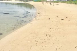 Hotel and resort for sale in Sulangan, Guiuan