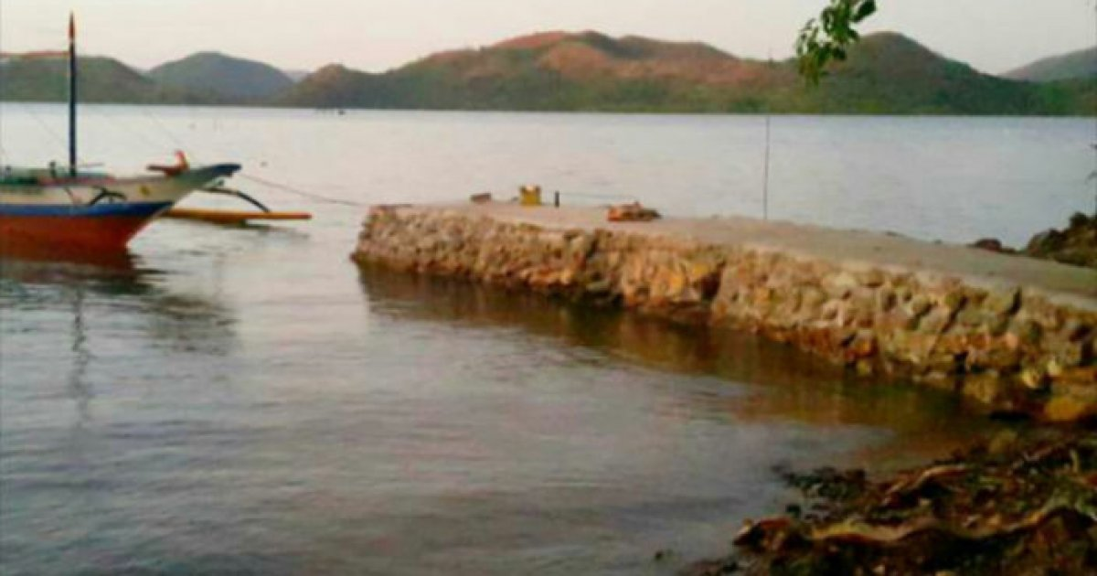 Palawan Property For Sale