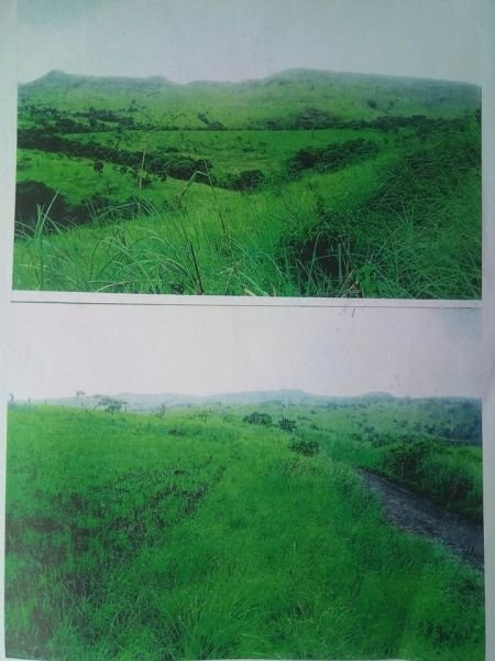 land for sale in aroroy, masbate