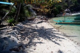 Land for sale in Port Barton, San Vicente