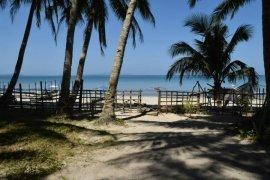 Land for sale in Alimanguan, Palawan near LRT-1 5th Avenue