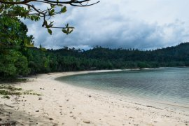 Land for sale in San Vicente, Palawan