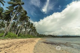 Land for sale in Quezon, Palawan