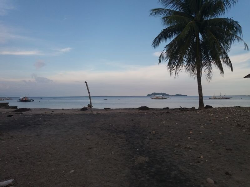 beach lot for sale with great view of apo island