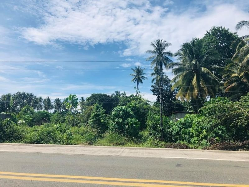 commercial lot for sale along national highway balingasag misamis oriental