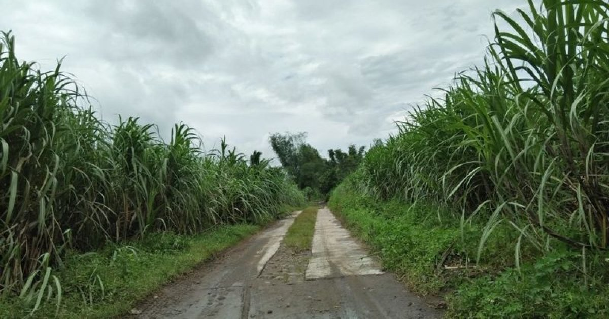 Bacolod Properties For Sale Philippines