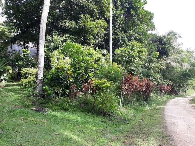 guimaras 500m from beach in lot for sale
