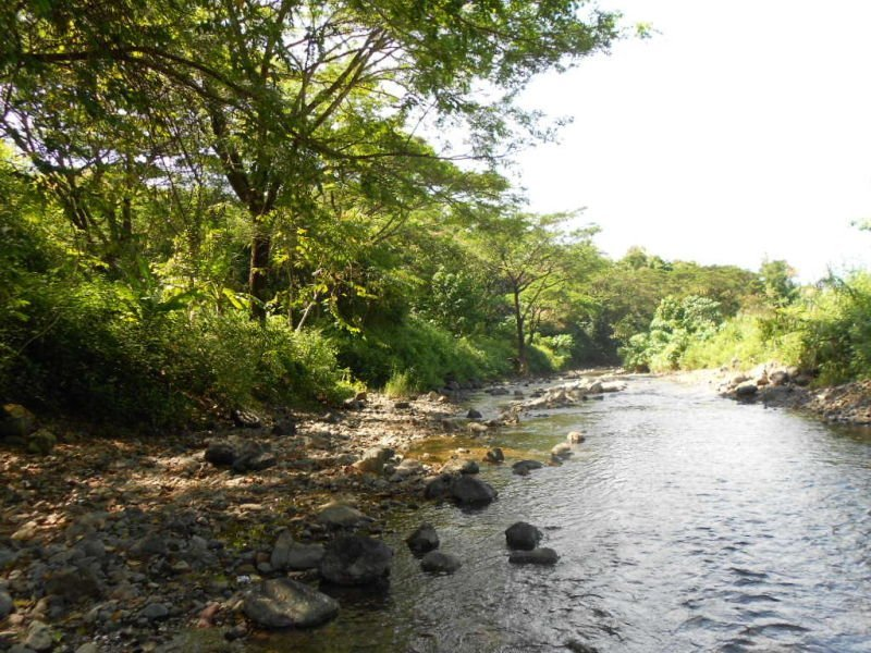 land for sale barrio san luis mamburao occ.mindoro