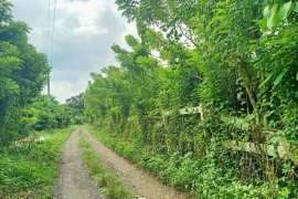 Land for sale in Tangob, Batangas