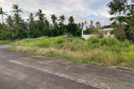Land for sale in Bauan, Batangas